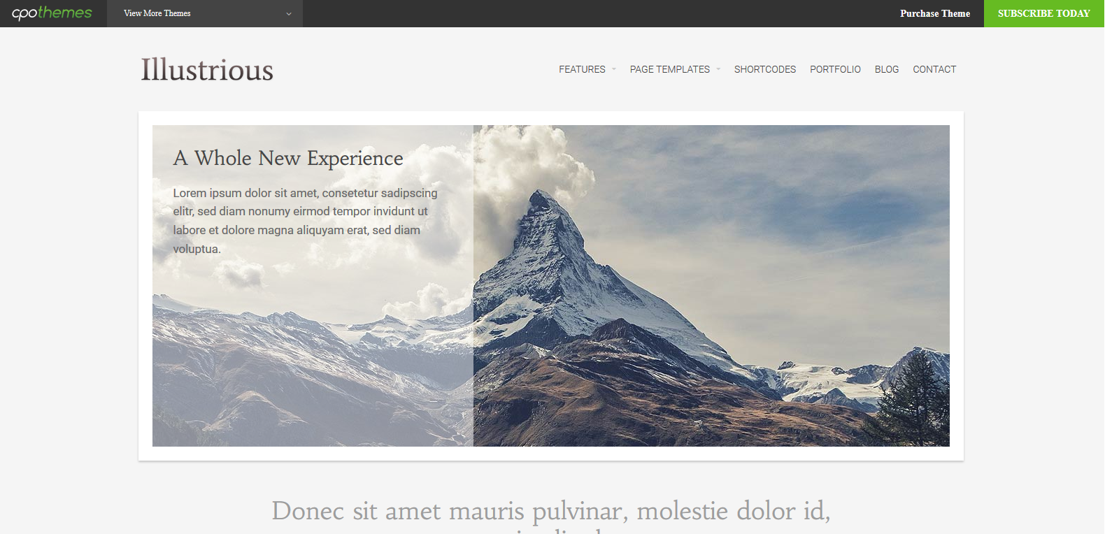 WordPress旅游主题:Illustrious