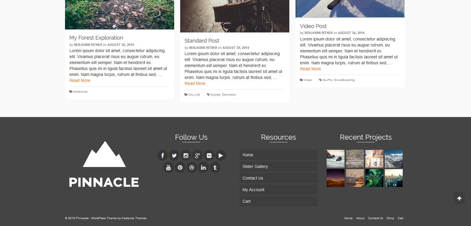 WordPress旅游主题:Pinnacle