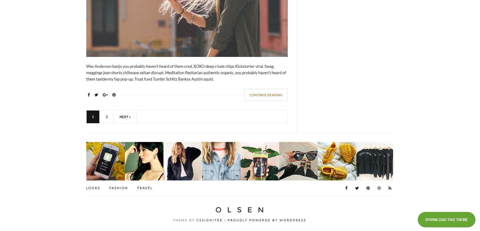 WordPress博客主题:Olsen Light