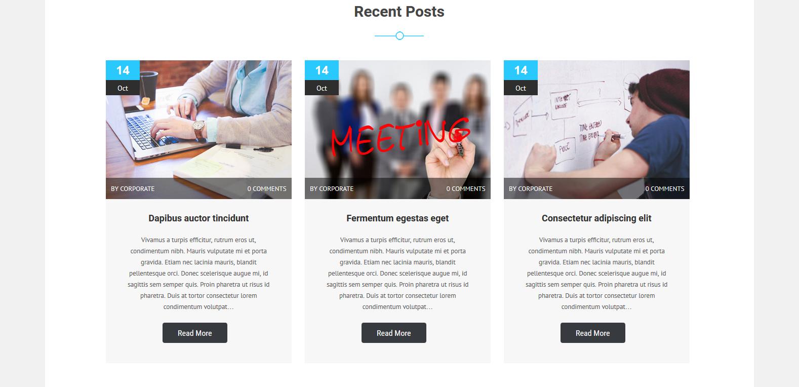 WordPress企业主题:Corporate Lite