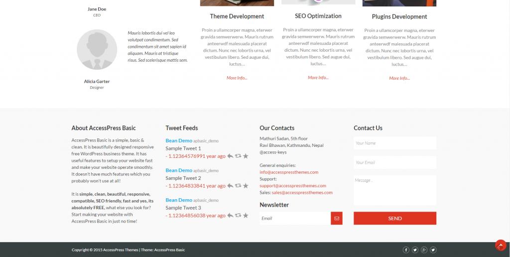 WordPress响应式企业主题:Accesspress Basic