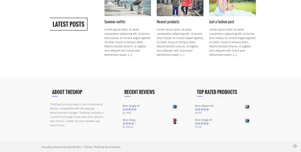 WordPress电子商务主题:TheShop