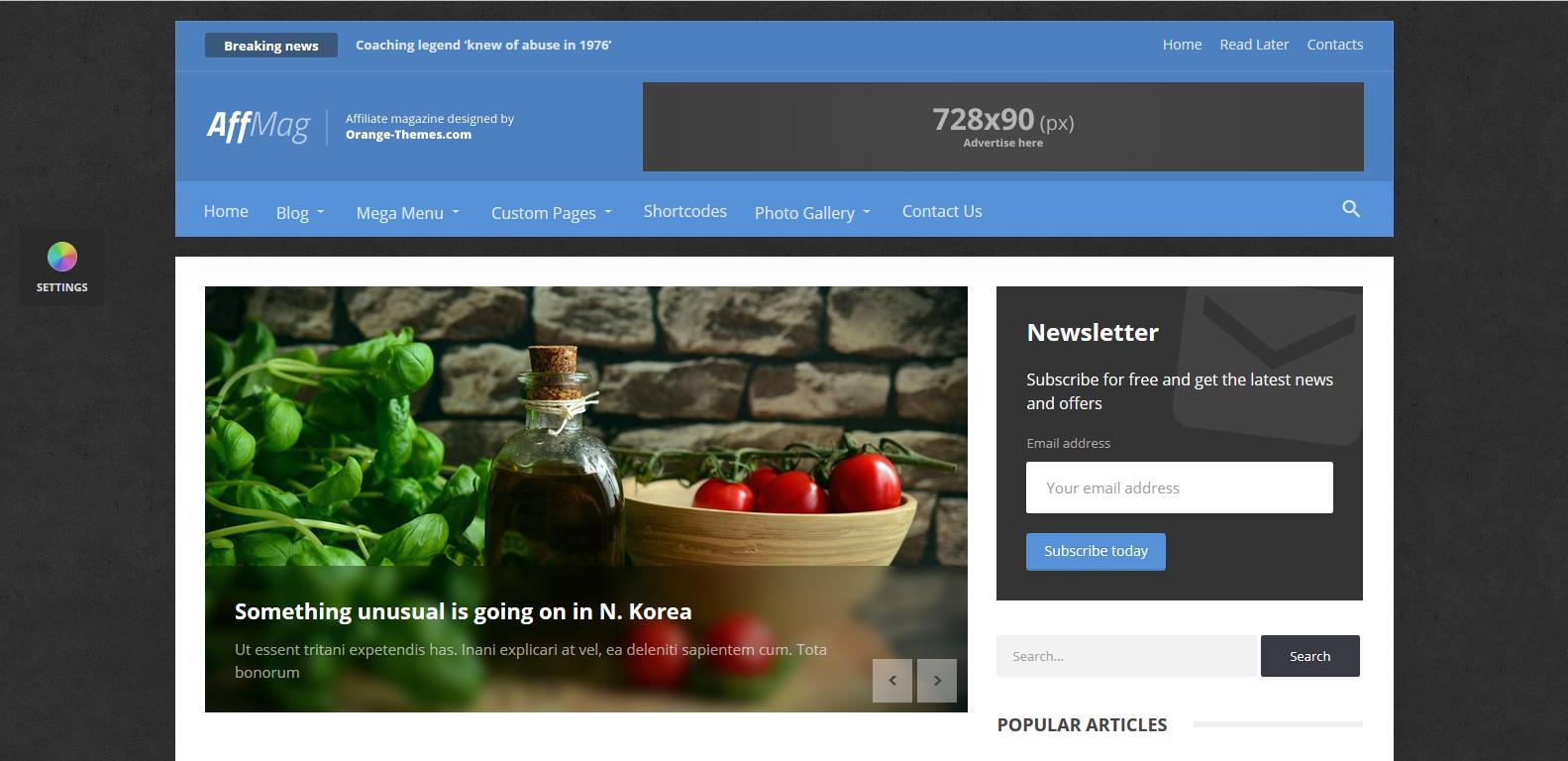 WordPress混合两栏主题:AffMag