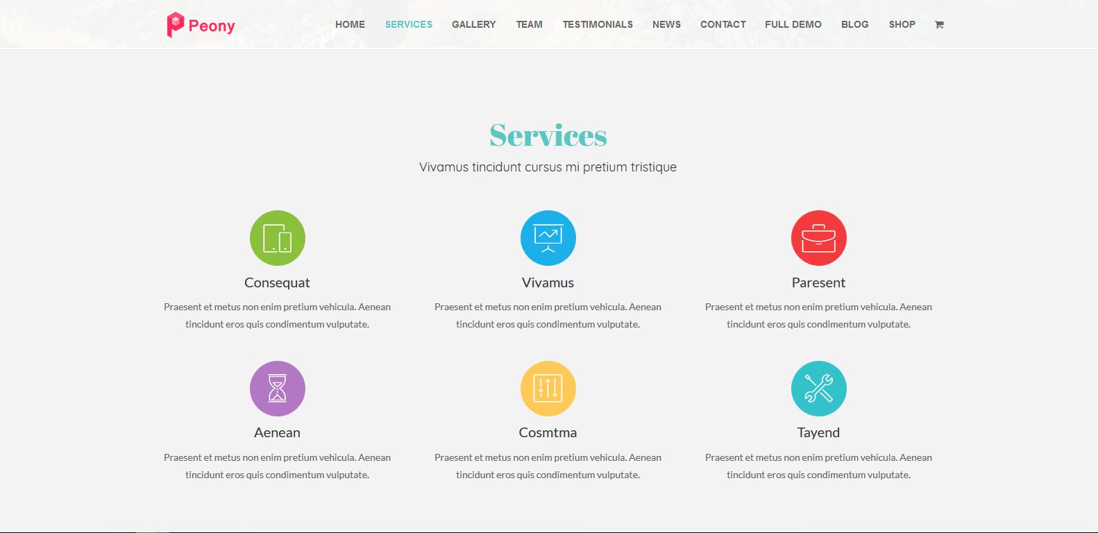 WordPress单页企业主题:Peony