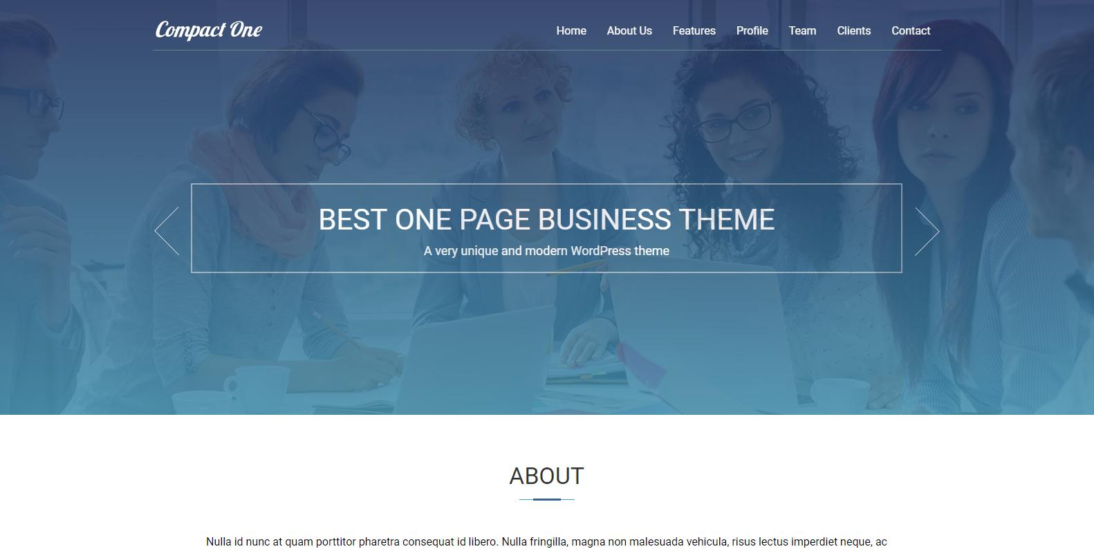 WordPress高质量设计公司主题:Compact One