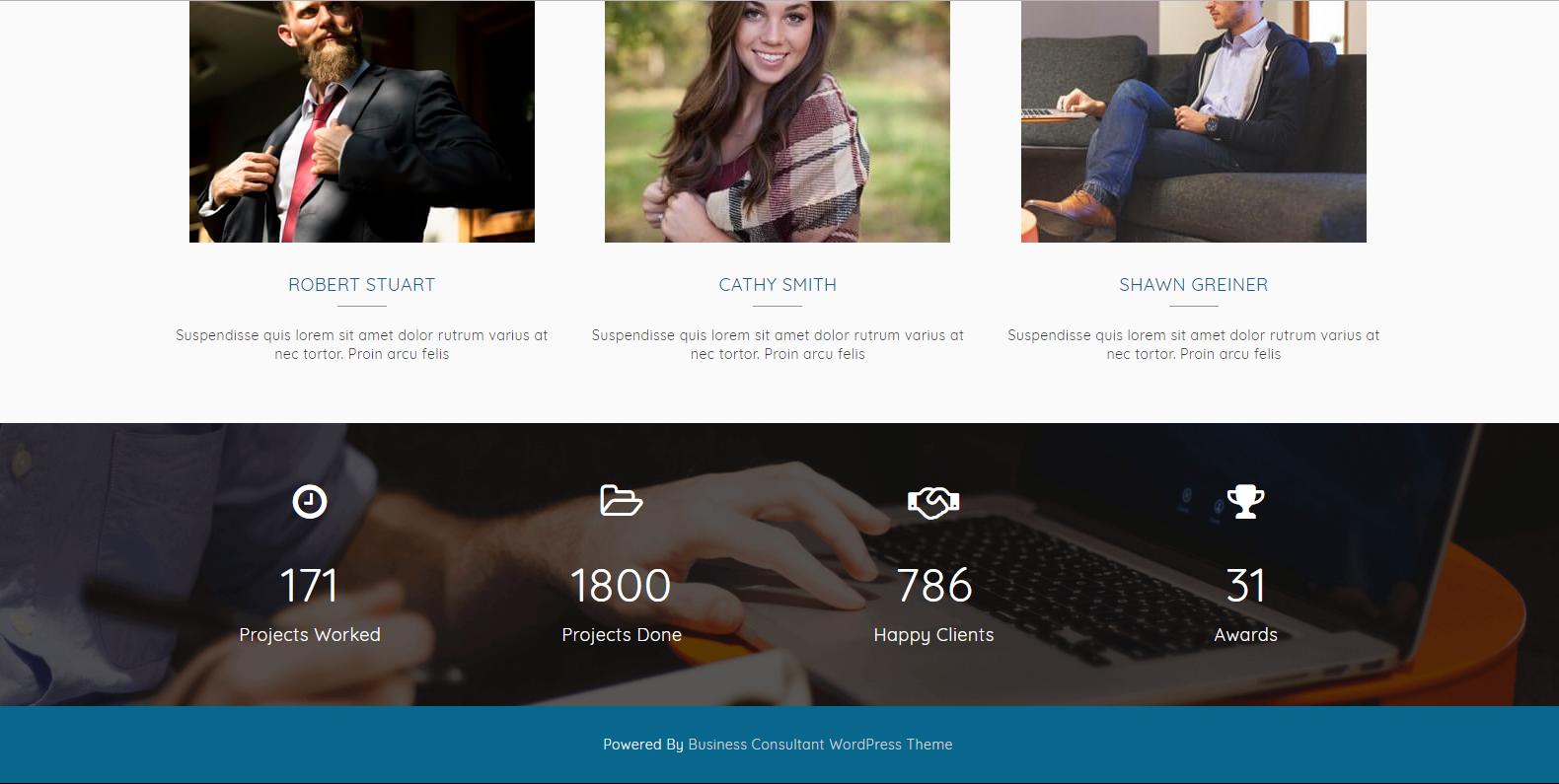 WordPress多用途商业主题:Business Consultant